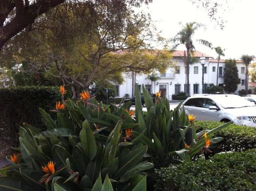 Santa Barbara1